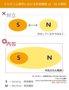 ナルキン心理学における知覚機能(S 感覚・N 直観)の関係